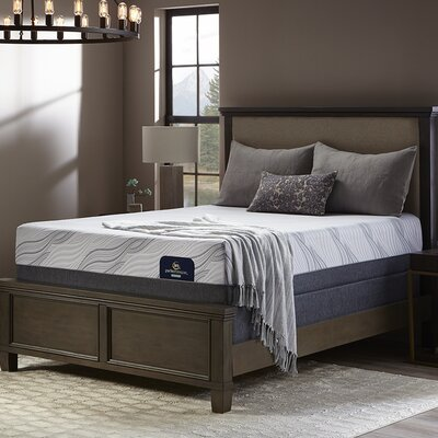 "Perfect Sleeper 13"" Medium Hybrid Mattress and Box Spring Mattress Size: Queen"