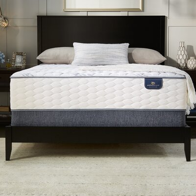 Broadview Firm Adjustable Base Innerspring Mattress Size: Twin