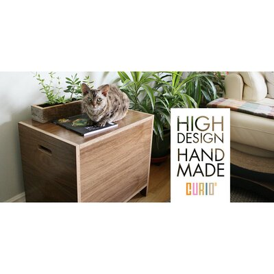 Modern Litter Box Enclosure Color: Walnut