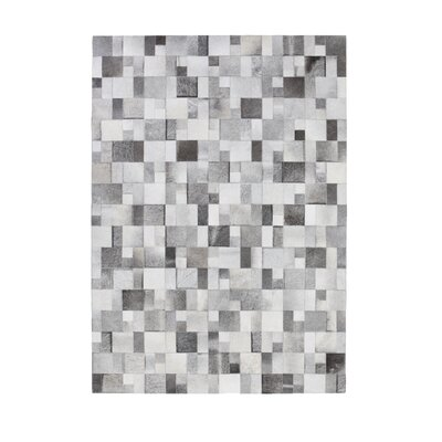 Brilliant Grey Area Rug Rug Size: 57 x 79
