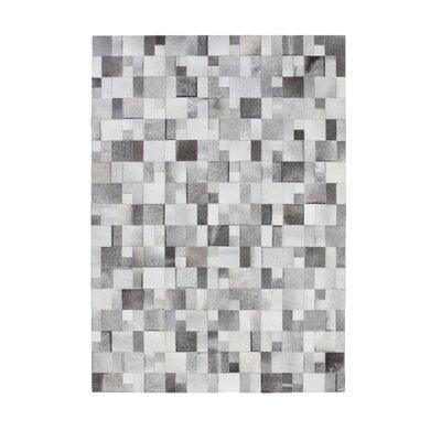 Brilliant Grey Area Rug Rug Size: 83 x 116