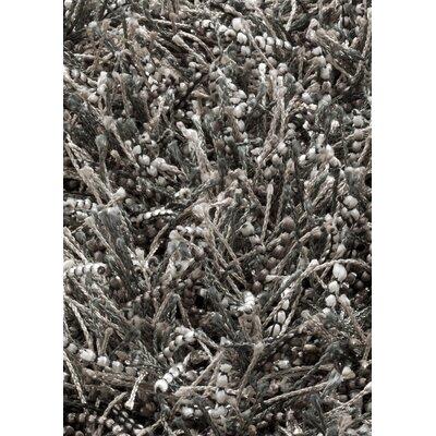 Sprinkle Dark Grey Area Rug Rug Size: 53 x 77