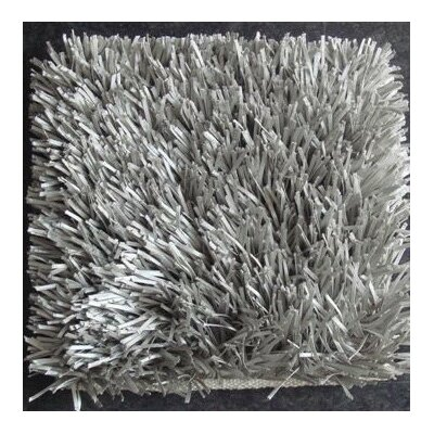 Treasure Solid Silver Area Rug Rug Size: 57 x 79