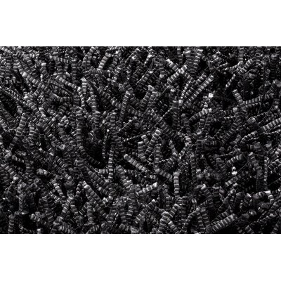 Electric Black Rug Rug Size: 57 x 79