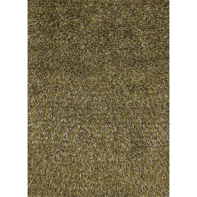 Sprinkle Lime Area Rug Rug Size: 53 x 77