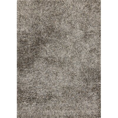 Sprinkle Dark Grey Area Rug Rug Size: 53 x 77