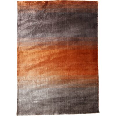 Grace Orange Area Rug Rug Size: 66 x 98