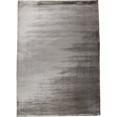 Simplicity Grey Area Rug Rug Size: 57 x 79