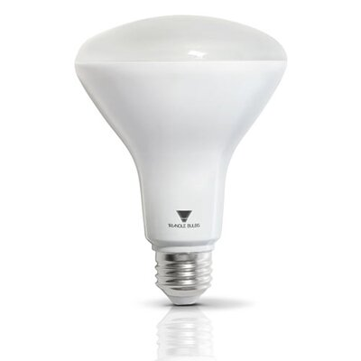 65W Equivalent E26 LED Spotlight Light Bulb
