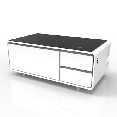 Sobro Coffee Table Color: White/Black