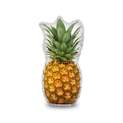 Sudbury Pineapple Throw Pillow