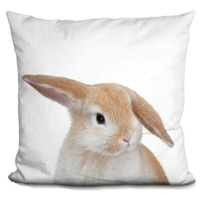 Banny Throw Pillow