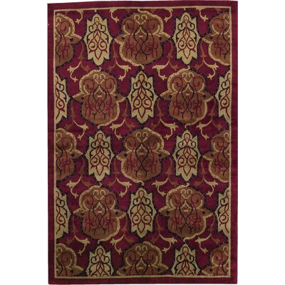 Himalayan Newde Wool Red/Black Area Rug
