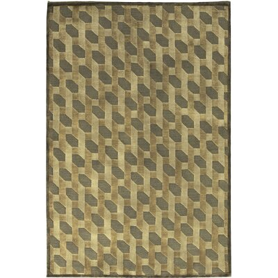 One-of-a-Kind Indian Hand-Woven Wool Taupe Area Rug Size: Rectangle 47 x 68