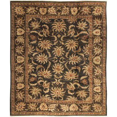 One-of-a-Kind Zarbof Orchid Hand-Woven Wool Gold/Black Area Rug