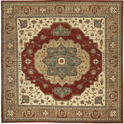One-of-a-Kind Sultanabad Hidden Treasure Hand-Woven Wool Brown/Red Area Rug