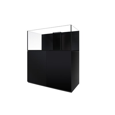 Aquarium kit Size: 20.5 H x 24 W x 24 D, Finish: Black
