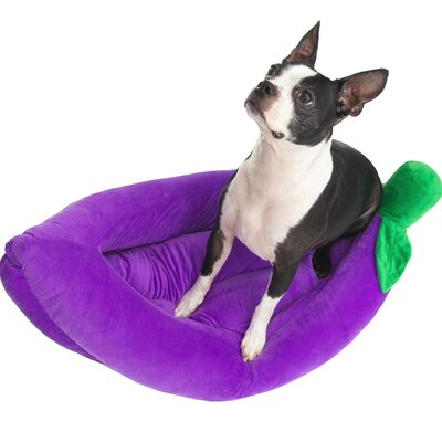 Crowley Fruit Cat/Dog Pet Bed Color: Purple