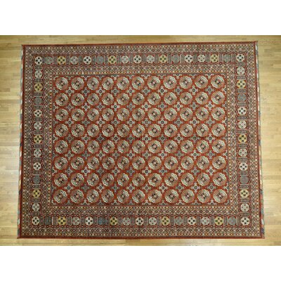 One-of-a-Kind Hoffman Elephant Feet Afghan Ersari Hand-Knotted Wool Rust Red Area Rug