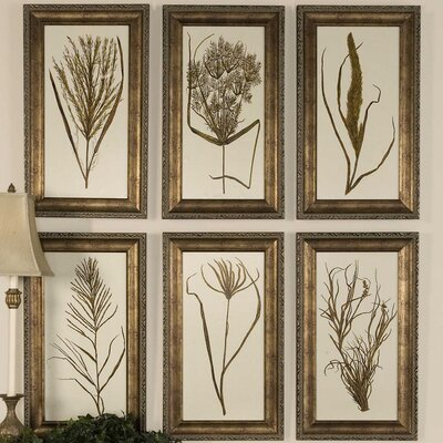 'Wheat Grass' 6 Piece Framed Painting Print Set