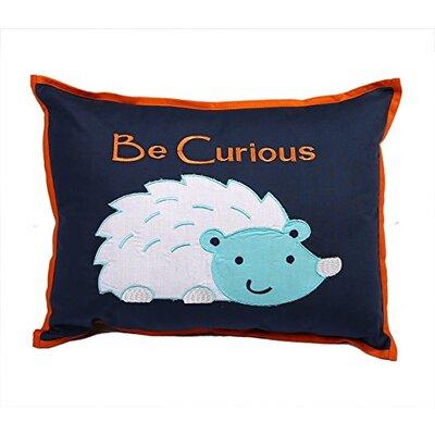 Liam Aztec Raccoon 100% Cotton Boudoir Pillow