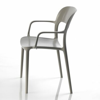 Gipsy Arm Chair Finish: Sand