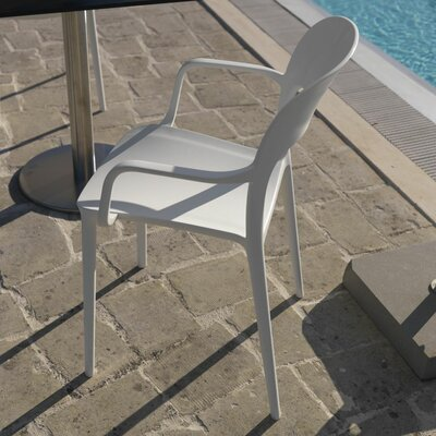 Gipsy Arm Chair Finish: White