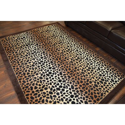 Patchell Black/Brown Area Rug
