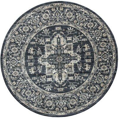 Park Vintage Classic Navy Blue/ivory Indoor/outdoor Area Rug Rug Size: Round 6