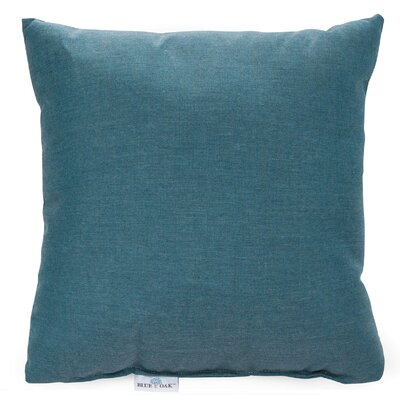 Cast Lagoon Outdoor Pillow Color: Teal, Product Type: Throw Pillow