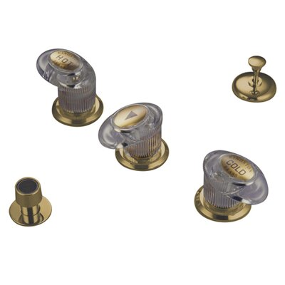 Triple Triple Handle Vertical Spray Bidet Faucet Finish: Polished Brass