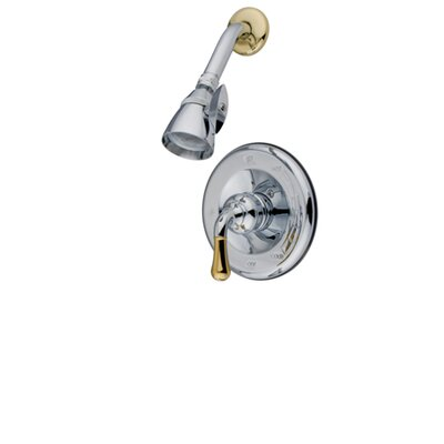 Volume Control Shower Faucet Finish: Chrome / Polished Brass