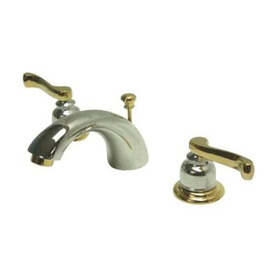 Mini-Widespread Double Handle Bathroom Faucet with Drain Assembly Finish: Satin Nickel/Polished Brass