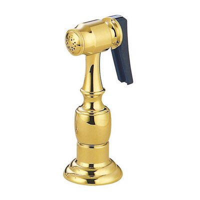 Brass Kitchen Side Sprayer with Hose Finish: Polished Brass
