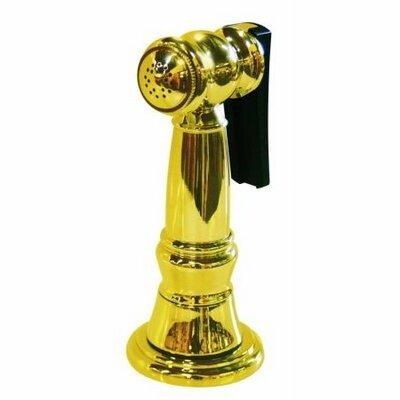 Brass Kitchen Side Sprayer with 48 Hose Finish: Polished Brass