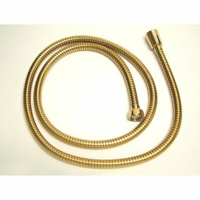 Hot Springs Hose Finish: Polished Brass