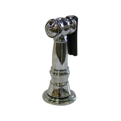 Brass Kitchen Side Sprayer with Hose Finish: Chrome