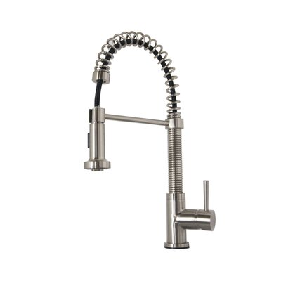 Arvia Pull Down Single Handle Kitchen Faucet Finish: Brushed Nickel