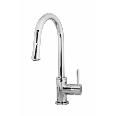 Sedna Single Handle Single Hole Kitchen Faucet with Pull-Down Spray Finish: Polished Chrome
