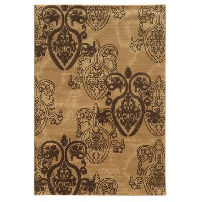 Jewel Area Rug Rug Size: Rectangle 2 x 3