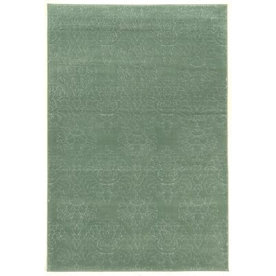 Prisma Chloe Aqua Rug Rug Size: Rectangle 5 x 7