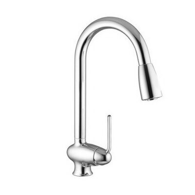 One Handle Single Hole Kitchen Faucet with Pull Out Spout Finish: Brushed Nickel