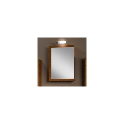 Luna 20.6 x 27.7 Surface Mounted Medicine Cabinet Finish: Teak