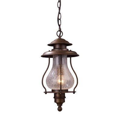 Wikshire 1-Light Outdoor Hanging Lantern
