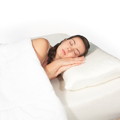 Ache-No-More� Standard Pillow