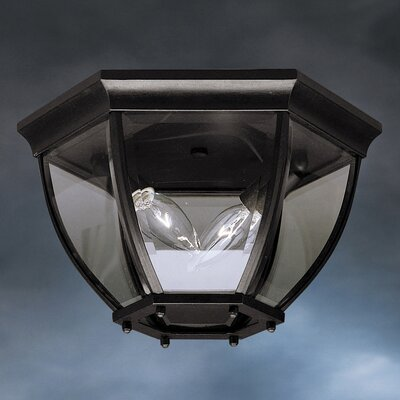 Connan 2-Light Flush Mount Color: Painted Black