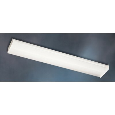 Utility 2-Light Linear Strip