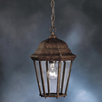 Connan 1-Light Outdoor Hanging Lantern Finish: Tannery Bronze