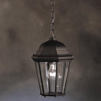 Connan 1-Light Outdoor Hanging Lantern Finish: Painted Black