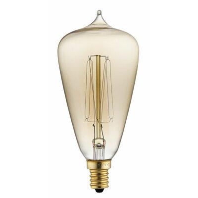40W Edison Light Bulb